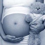 Legisladores pidieron informe sobre situación de niña embarazada víctima de abuso y la declaración de emergencia social por violencia de género