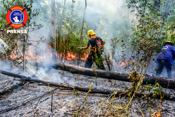 Bomberos de Andresito sofocaron incendios forestales que habrían sido provocados intencionalmente