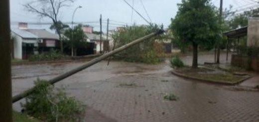 La tormenta derribó doce postes de luz en Garupá y trabajan para normalizar el servicio