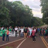 Científicos del CeIBA no recomiendan el desarrollo del proyecto de una Villa Turística en el Parque Nacional Iguazú
