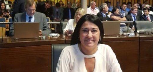 Para la diputada Liliana Rodríguez, Libertad, Valores y Cambio no pugna por cargos sino por una construcción política