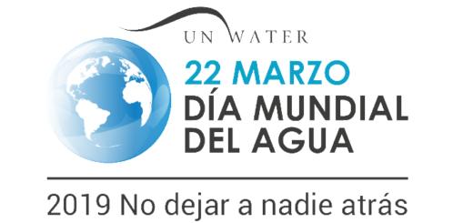 Día mundial del agua: sus múltiples beneficios para la salud