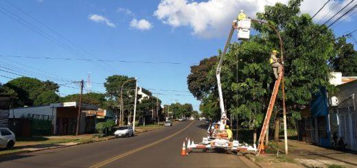 Plan Avenidas Posadas: Vialidad instaló luminarias LED en la Tambor de Tacuarí