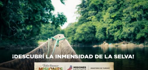 #SelvaMisionera: la morada del yaguareté