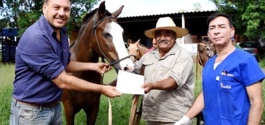Tracción a sangre: 20 recuperadores urbanos recibieron el Carnet Sanitario Animal de sus equinos en Posadas