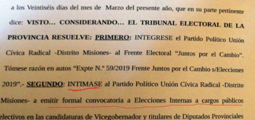 Elecciones2019: La UCR podrá integrar la alianza con el puertismo y el Pro, pero deberá convocar a interna
