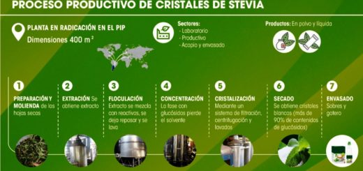 Planta productiva piloto de base tecnológica producirá Stevia de alta calidad en Posadas