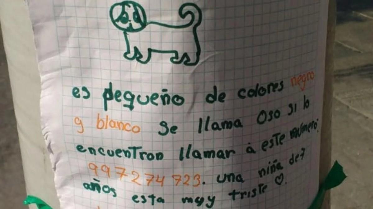 Una nena de 7 años perdió a su perro y el cartel que hizo para encontrarlo enterneció a todos en las redes sociales