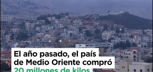 Error en un spot del ministerio de Producción de la Nación provocó enojo en los yerbateros