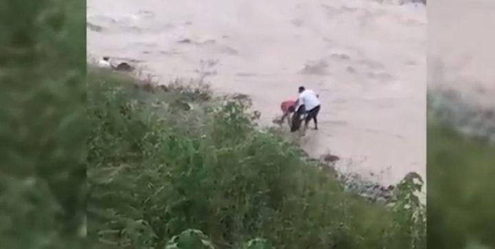 Indignante caso de maltrato animal en Jujuy: dos jóvenes arrojaron un perro al río