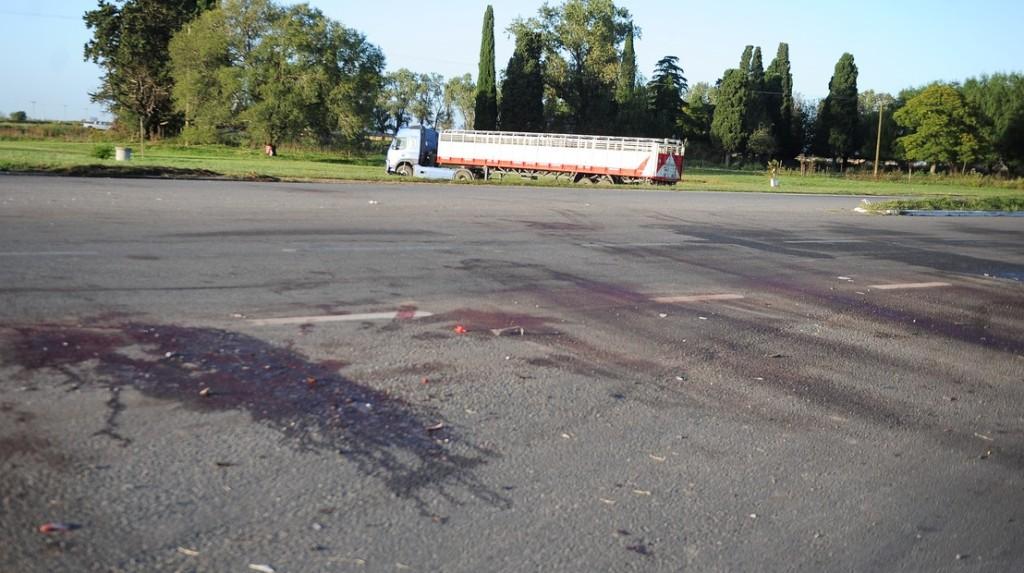 Mueren ocho personas en un choque frontal en Carmen de Areco: uno de los autos se incendió