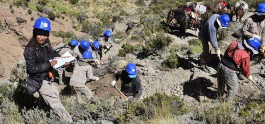 Salta: denunciaron que motoqueros destrozaron un trayecto del Camino del Inca a 4 mil metros de altura y en pleno proceso de restauración
