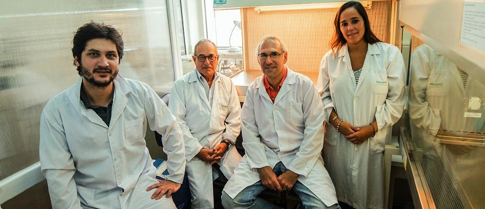 Investigación del CONICET refuerza la hipótesis del efecto preventivo del mate sobre el desarrollo del Parkinson