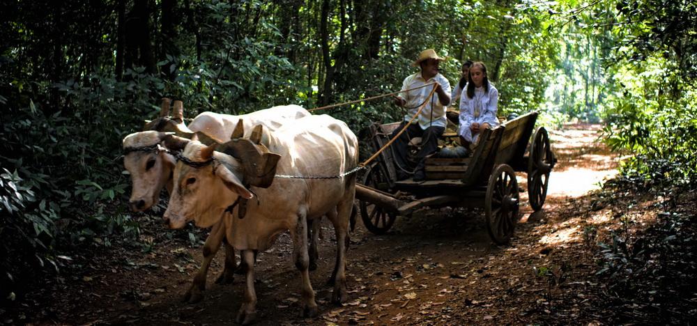 Cara Sucia y un encantador retrato de la selva misionera en la primera producción internacional animada de la provincia