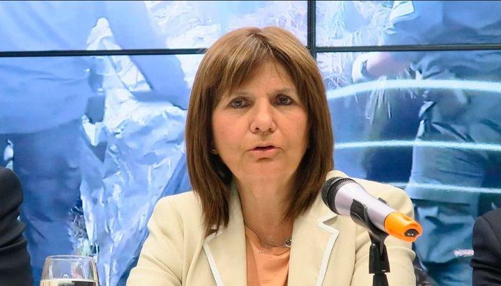 """Patricia Bullrich: """"Entre miércoles y jueves podría llegar al país Alberto Samid"""""""