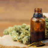 La Biofábrica espera la certificación del Ministerio de Seguridad para comenzar el cultivo de cannabis medicinal