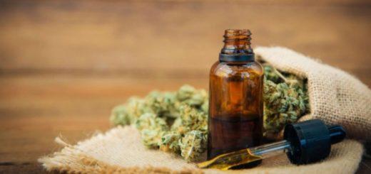 """Aceite de cannabis: """"Misiones está dando equidad en el acceso a este medicamento"""", dijo el diputado Jorge Franco"""