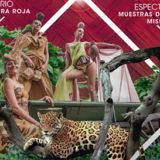 """Este sábado el cuarto tramo de la Costanera será escenario del mega festival internacional """"Mujer Tierra Roja"""""""