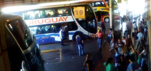Semana Santa: el flujo más alto de pasajeros en Terminal de Posadas se daría el jueves con 130 buses adicionales