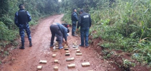 La Policía de Misiones dio tres golpes al narcotráfico en menos de 24 horas