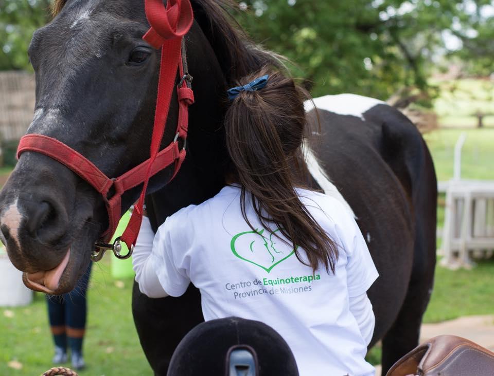 Coordinadora del Centro de Equinoterapia se cruzó en la ruta con un caballo en pésimo estado