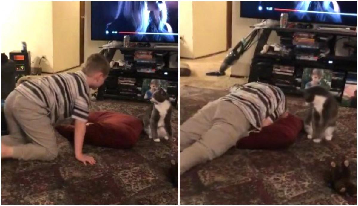 Ternura viral: un gato detiene la crisis de llanto de un nene