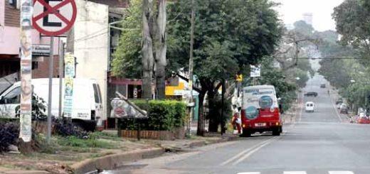 Desde el Concejo Deliberante posadeño insisten en que faltan más controles para que se respeten las bicisendas de la ciudad