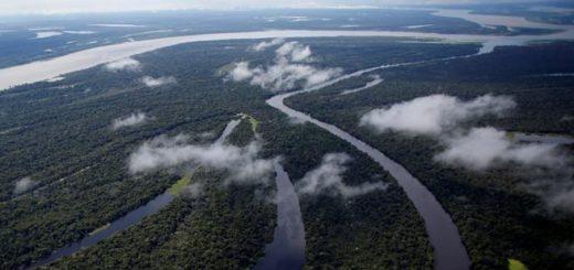 Científicos de WWF afirman que como consecuencia del cambio climático, presas y embalses, solo un tercio de los ríos más largos del mundo fluyen libremente