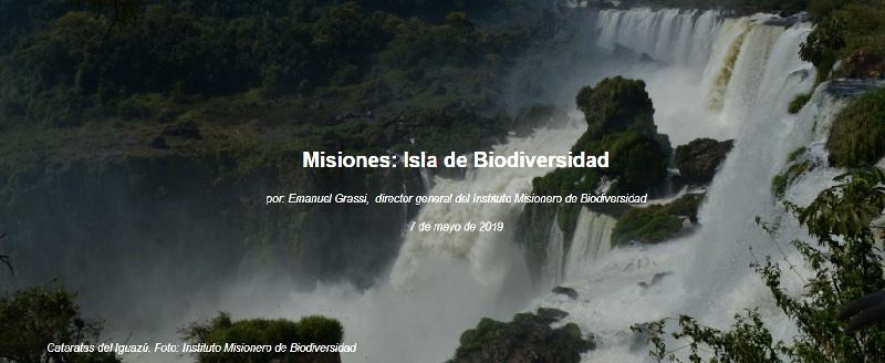 El Gobernador Hugo Passalacqua confirmó que #Misiones se suma a las Naciones Unidas y su New York Declaration Forest