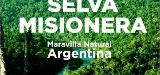 El Gobernador Hugo Passalacqua celebró la consagración de la Selva Misionera como Maravilla Natural Argentina