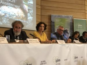 """Biodiversidad y cambio climático: alerta mundial ante el informe de científicos presentado hoy en París que expuso """"riesgos para la supervivencia humana"""""""