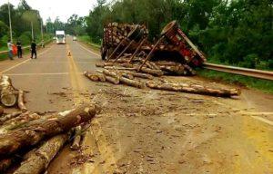 Graves riesgos para automovilistas en ruta nacional 12 porel transporte de carga de raleo de pinos mal asegurados