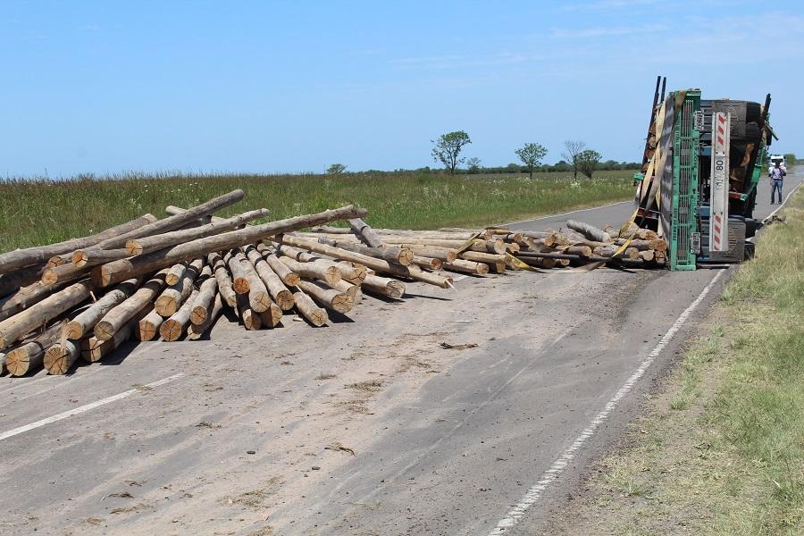 Desde la Asociación Forestal Argentina exigen que choferes de cargas de madera aseguren bien sus mercaderías para evitar accidentes en la ruta