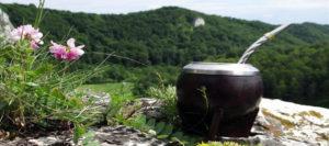 Marandú y la ARYM firmarán un acuerdo para promocionar la Ruta de la Yerba Mate