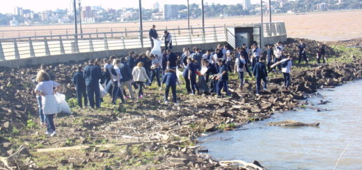 El Liceo Storni limpió la Costanera de Posadas en el Día Mundial del Medio Ambiente