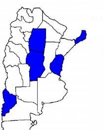 La boleta corta que anticipó la Renovación ya se repite en otras cuatro provincias