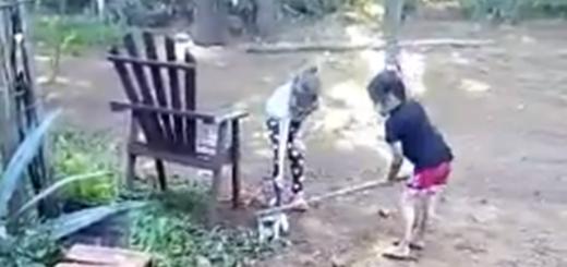 Horror en Capioví: dos nenas fueron filmadas mientras golpeaban con palos y arrojaban contra un alambrado a un gato