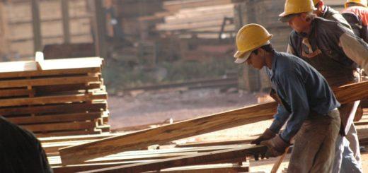 """Gremios madereros aseveran que se mantiene """"estable"""" la actividad y el diálogo con las empresas para sostener la fuente laboral"""