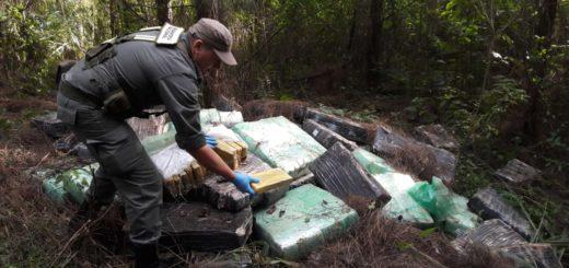 Gendarmería secuestró más de una tonelada de marihuana en Puerto Libertad