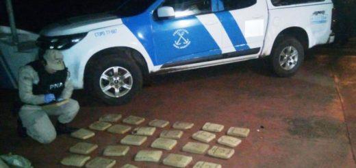 """""""Marihuana Camuflada"""" en Misiones: secuestraron más de 29 kilos del estupefaciente valuados en más de un millón de pesos en Montecarlo"""