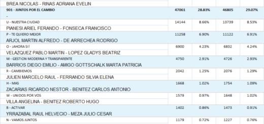 Vea cuáles fueron los resultados de las #Elecciones2019 en Posadas