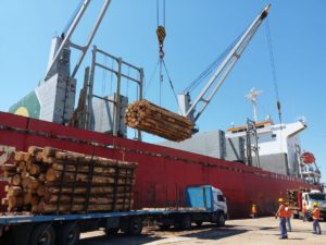 Logística competitiva desde Entre Ríos: rehabilitación de trenes de cargas y puertos favorecerán la salida de exportaciones de la Región NEA