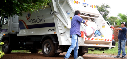 Posadas: el municipio recolecta 300 toneladas de residuos domiciliarios por día