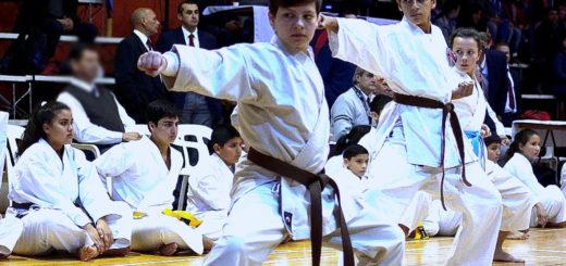 "Se realizó el Torneo Provincial de Karate Do ""Budokan 2019"""