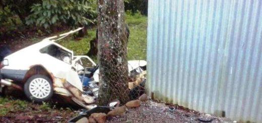 Un automóvil despistó sobre la avenida Formosa de Eldorado: el conductor murió
