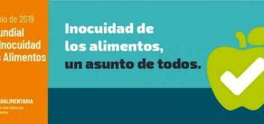 Día Mundial de la Inocuidad Alimentaria: claves para cuidar nuestros alimentos a diario