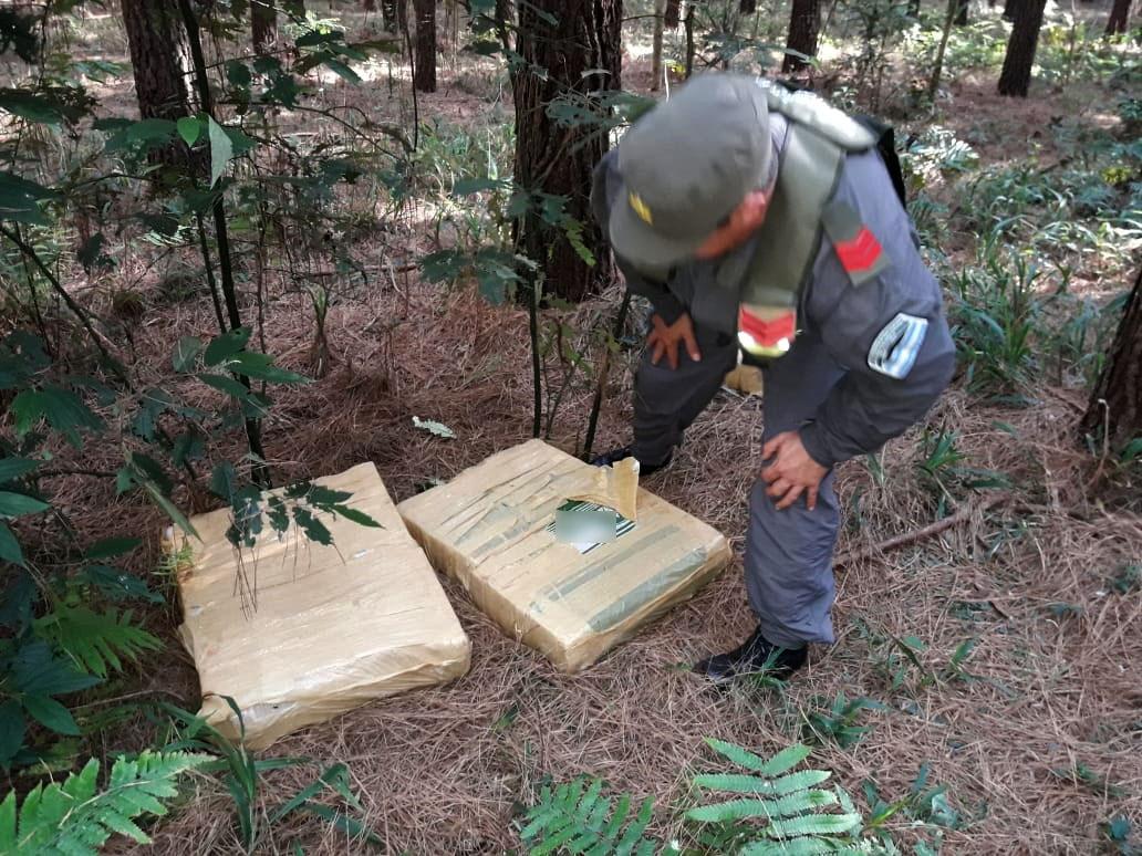 Gendarmería incautó casi una tonelada de marihuana en San Ignacio y otro cargamento en el Paraje Dos Hermanas