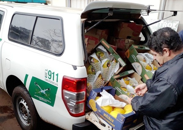 El Senasa decomisó pescado y frutas no aptas para el consumo en Misiones