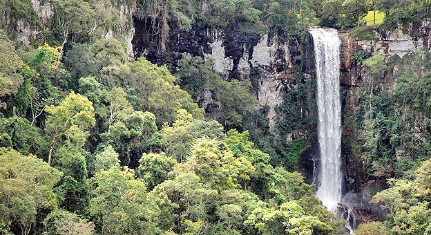 Con la Selva Misionera como maravilla natural de Argentina, aumentaron los números en el sector turístico del interior de la provincia