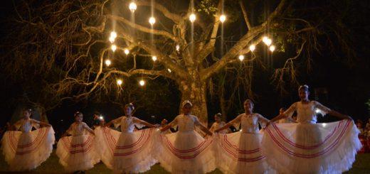 Colosos de la Tierra de Paraguay, el mayor concurso del país que busca la preservación de los bosques nativos, avanza en su 8va expedición para medir árboles gigantes